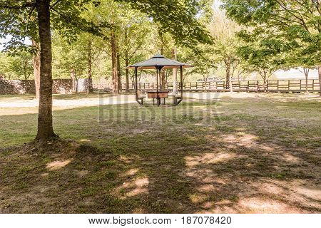 Wooden gazebo in a public park in South Korea with shadows cast by trees in foreground.