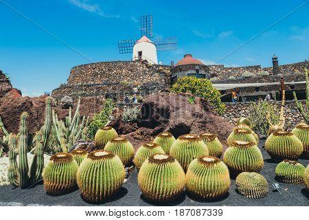 Lanzarote - March 29, 2017: View Of Cactus Garden In Guatiza, Popular Attraction In Lanzarote, Canar