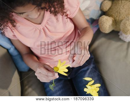 Mixed race girl picking petals from flower