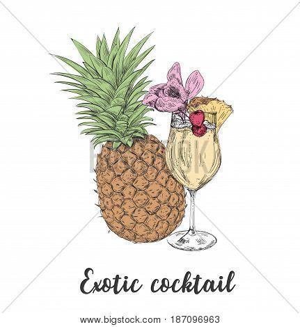 Cocktail sketch pineapple. Sketch cocktails vector art