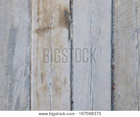 Old board with some garbage between them.  Wooden texture with vertical structure. Abstract wood background with place for text.