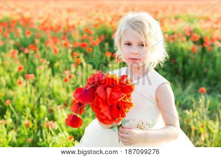 girl model, poppies, childhood, fashion, children, nature and summer concept - young beautiful blonde girl with bouquet of poppy, she in a white gown in a field of blooming poppies