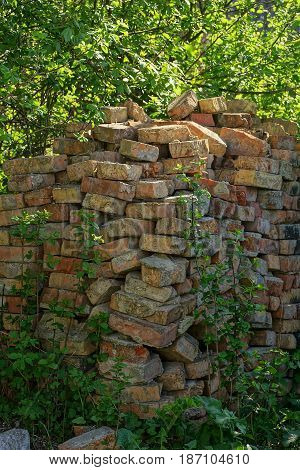 Heap of old brown bricks in thickets of grass and bushes