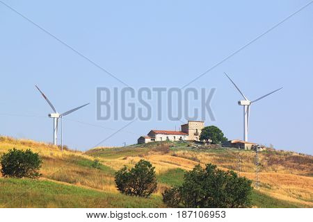 Modern windmills in summer in countryside amidst yellow grass and green trees