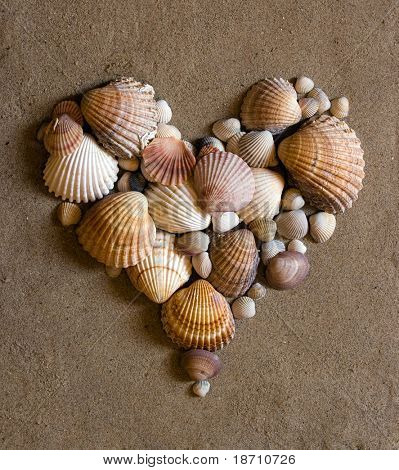 valentine heart made with shells