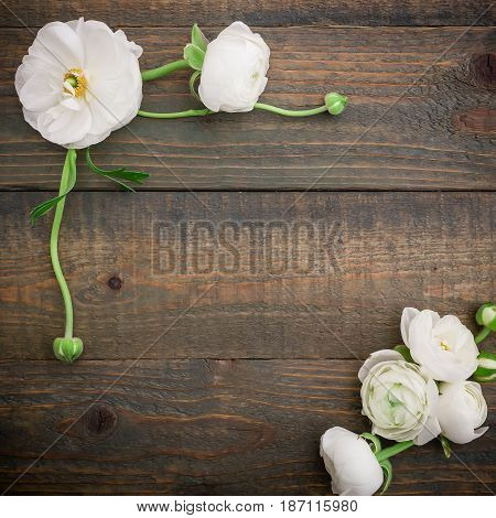 Floral frame of white ranunculus on wooden background. Flat lay, top view. Floral pattern
