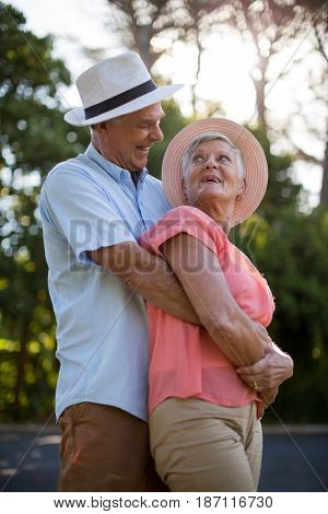 Cheerful senior couple embracing on roadside