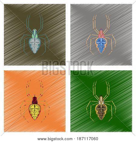 assembly flat shading style illustration of spider Araneus