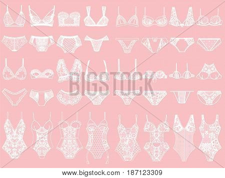 Collection of lingerie. Panty and bra set. Body. Vector illustrations