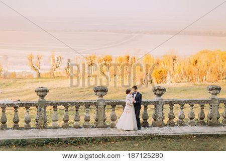 The lovely composition of the nature in the spring. The newlyweds are hugging in the front of the antique fence
