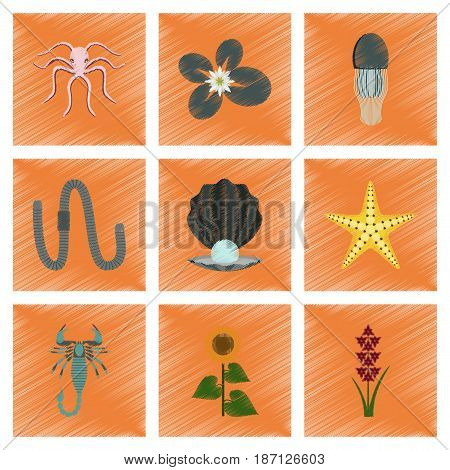 assembly flat shading style illustration of animal octopus jellyfish water lily pearl mussel