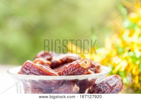 Close up of date fruits in glass bowl in natural background. Ramadan, Eid Concept