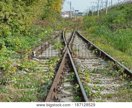 Two railways symmetrically receding to the horizon. Railway tracks perspective with trees along. Rail shooter in the middle. Soft focus.