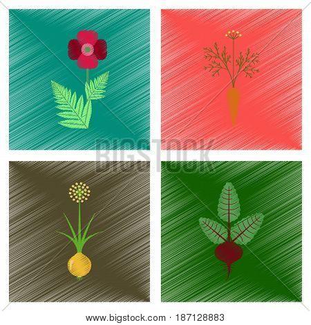 assembly flat shading style illustration of papaver daucus carota allium beta