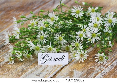 Get well card with chamomile flowers on rustic wooden surface