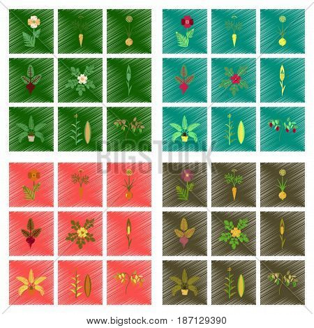 assembly flat shading style illustration of papaver daucus carota allium beta rosa majalis phoenix zea mays pepper