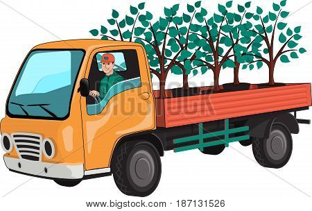 Truck with tree seedlings. Isolated, on white background