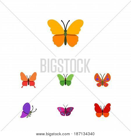 Flat Monarch Set Of Archippus, Butterfly, Milkweed And Other Vector Objects. Also Includes Archippus, Monarch, Butterfly Elements.