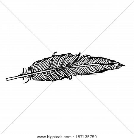 Feather Of Bird Doodle Hand Drawn