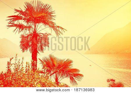 Como Lake In Summer, Italy.
