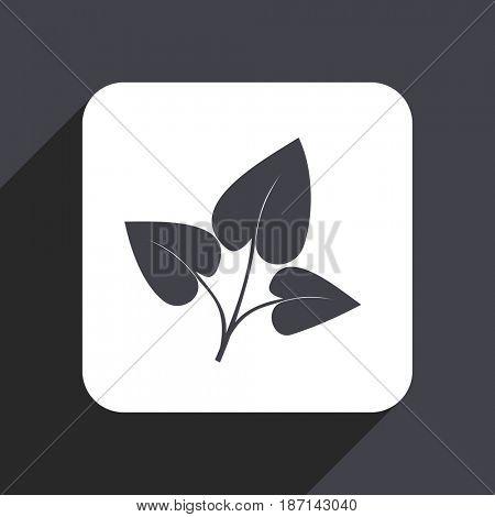 Leaf flat design web icon isolated on gray background