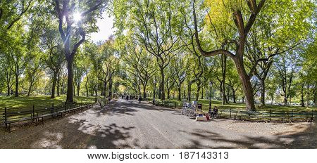 People Enjoying Walking In  Central Park