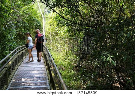 Jungle Tourism