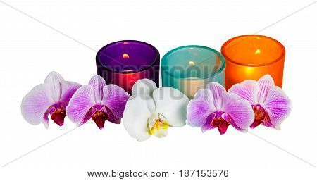 Orchids and candle glasses isolated on white background