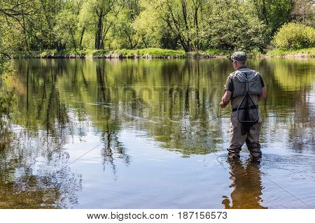 The fisherman walks in the river and flies on the Otava River. View from the rear of the fisherman. South Bohemia Czech republic.