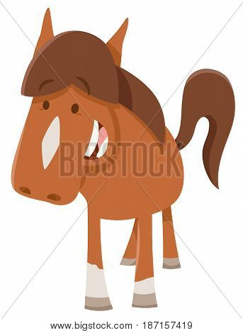 Cute Horsepr Pony Farm Animal