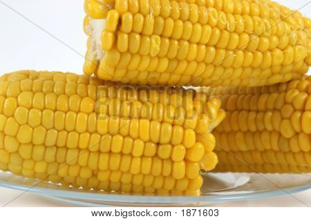 Cooked Yellow Corn Cobs