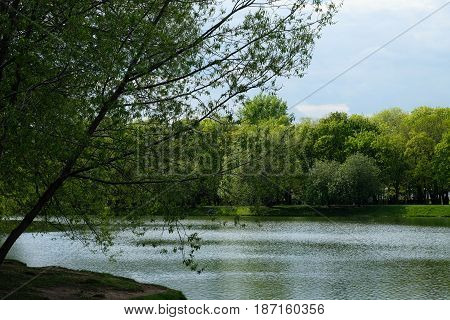 Beautiful pond landscape - Novodevichy Convent park, Moscow, Russia