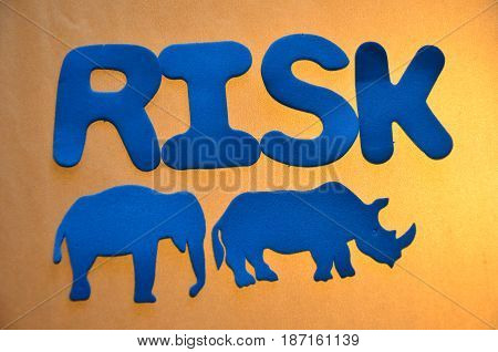 word risk on a  abstract colo0rful background