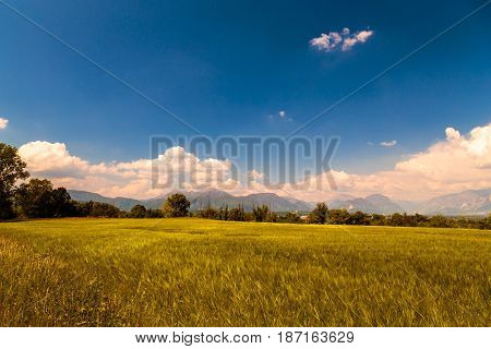 Fields Of Italy In A Spring Day