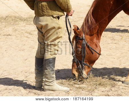 soldier feeding his horse.She had a long ride and was very tired.