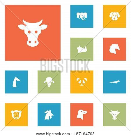 Set Of 12 Beast Icons Set.Collection Of Bear, Lamb, Gecko And Other Elements.