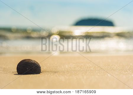 Sea Beach  With Island Background