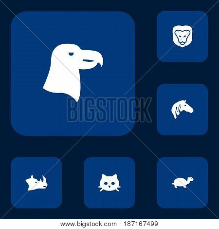 Set Of 6 Beast Icons Set.Collection Of Wildcat, Horse, Pussy And Other Elements.
