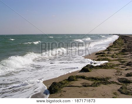 Sea Coast Waves on Water Sandy beach Blue Sky Summer Background Vector.