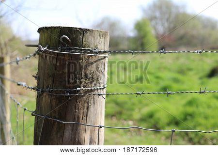 Bard wire fence on Swan Pool in BirminghamUK