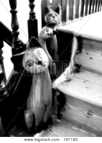 wooden cats on old stairs poster