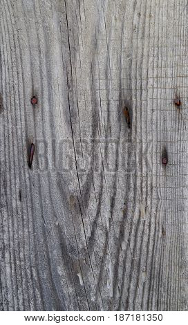 dry gray cracked plank with a rusty nails closeup