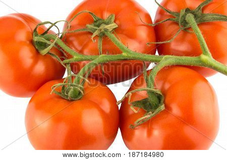 Tomatoes Bunch Isolated On White Background Close Up.