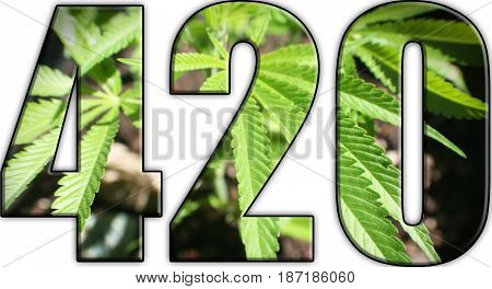 Marijuana Logo ( 420 ) With Marijuana Leaf Inside High Quality