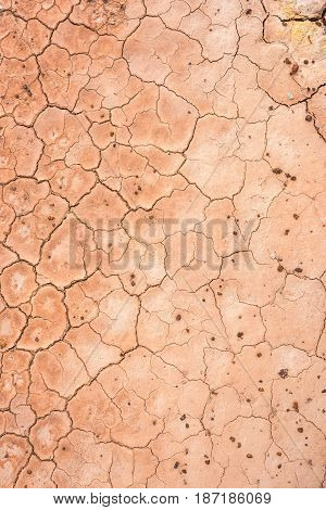 Close up of cracked soil texture background
