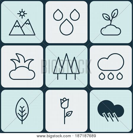 Set Of 9 Ecology Icons. Includes Tree Leaf, Water Drops, Raindrop And Other Symbols. Beautiful Design Elements.