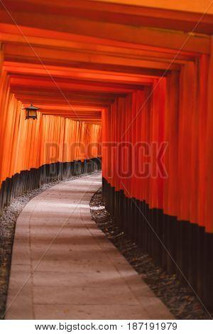 Fushimi Inari Taisha Torii Gates. Popular Kyoto Travel Landmark Fushimi Inari Shrine Is Located In K
