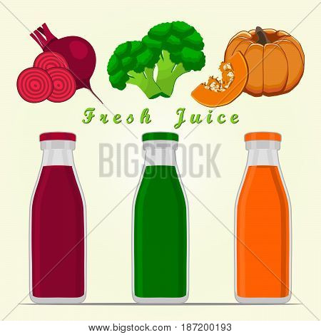 Vector illustration of logo for vegetables beet broccoli pumpkin cut sliced.Beet drawing consisting of peel fruits ripe sweet food leaf.