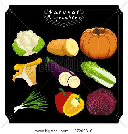Vector for green fruits pepper cucumber radish onion tomato carrot potato mushroom zucchini.Eat fresh peppers cucumbers radishs onions tomatoes carrots potato mushrooms zucchini for health.