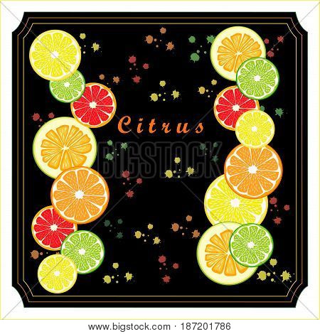 Abstract vector illustration logo for ripe citrus fruit orange lemon lime grapefruit pomelo cut sliced.Citrus peel fruits lemons ripe limes sweet grapefruits fresh pomelos.